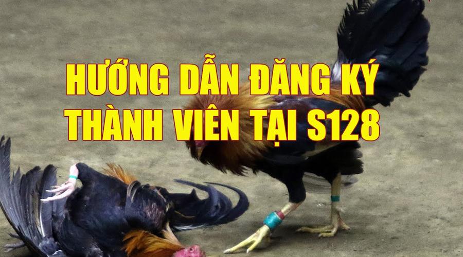 Cách đăng ký S128 cá cược đá gà