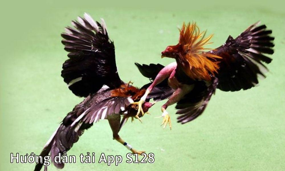 Hướng dẫn tải App S128